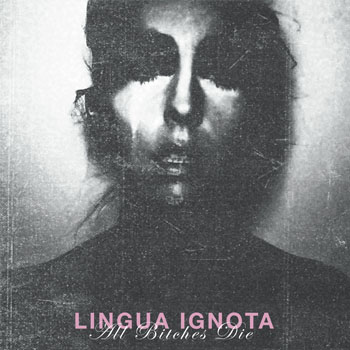 Linguaignota